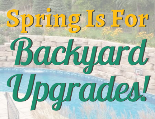 Spring is For Backyard Upgrades!